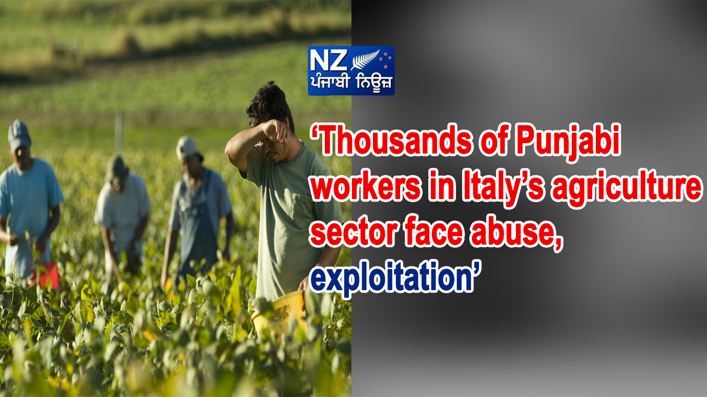 'Thousands of Punjabi workers in Italy's agriculture sector face abuse, exploitation' - NZ Punjabi News